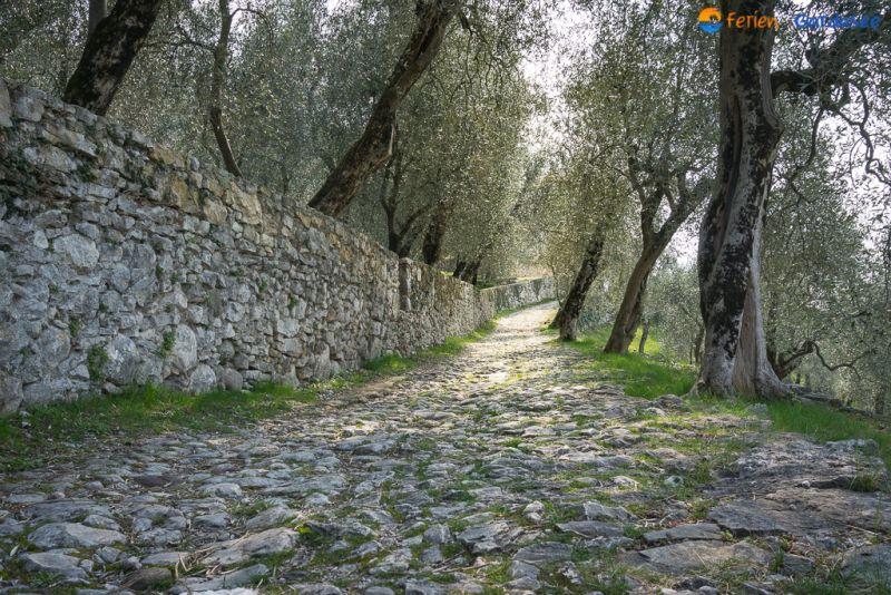 Campo_di_Brenzone