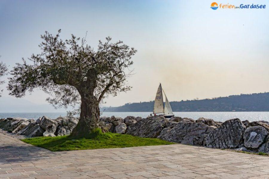 Bucht von Salo